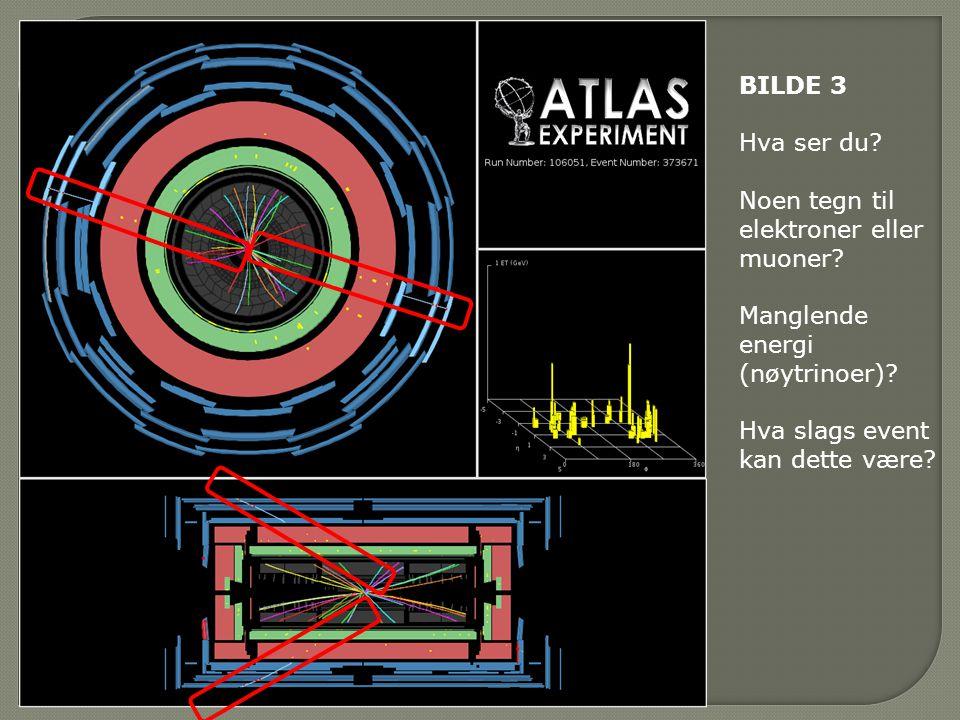 BILDE 3 Hva ser du. Noen tegn til elektroner eller muoner.