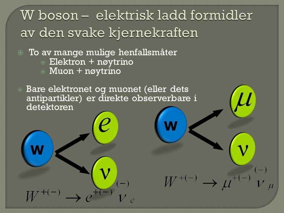 W ν ν W  To av mange mulige henfallsmåter  Elektron + nøytrino  Muon + nøytrino  Bare elektronet og muonet (eller dets antipartikler) er direkte observerbare i detektoren
