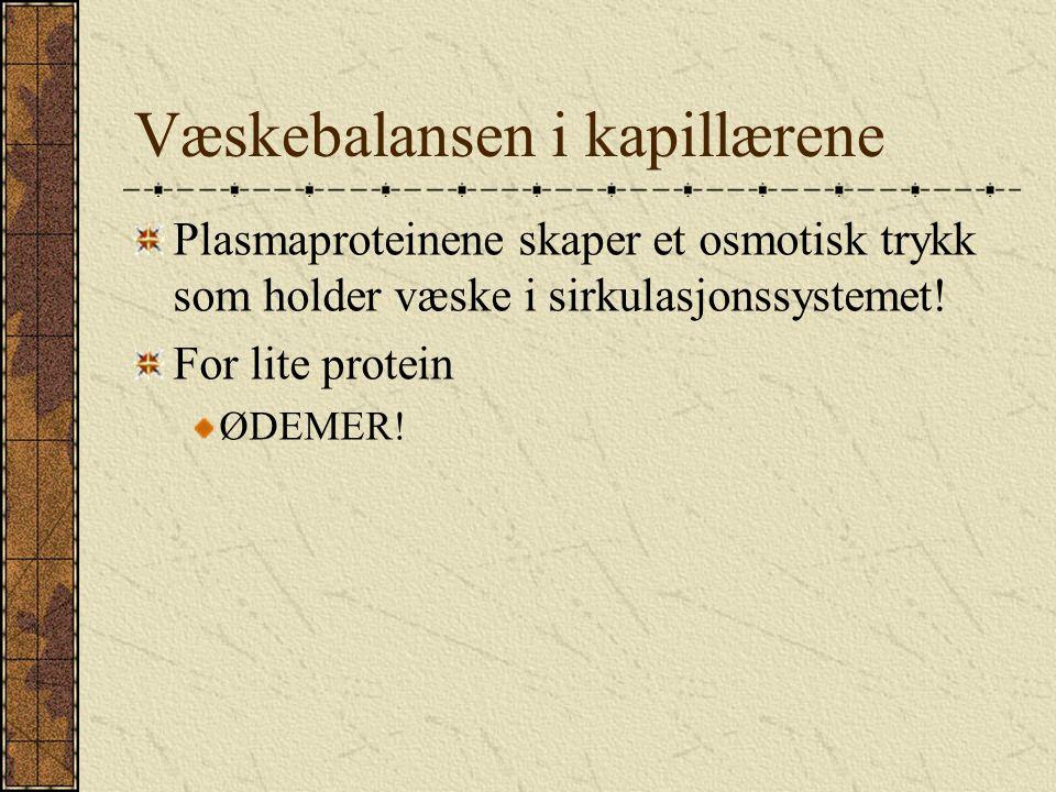 Et legemiddel fra plasma : Albumin.