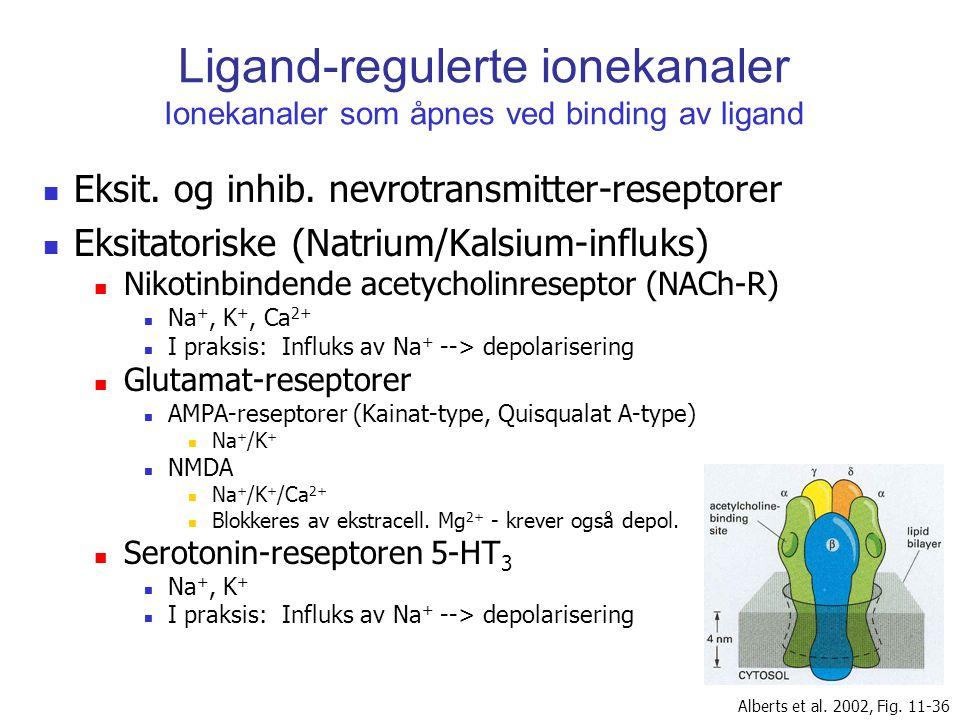 Ligand-regulerte ionekanaler Ionekanaler som åpnes ved binding av ligand Eksit. og inhib. nevrotransmitter-reseptorer Eksitatoriske (Natrium/Kalsium-i
