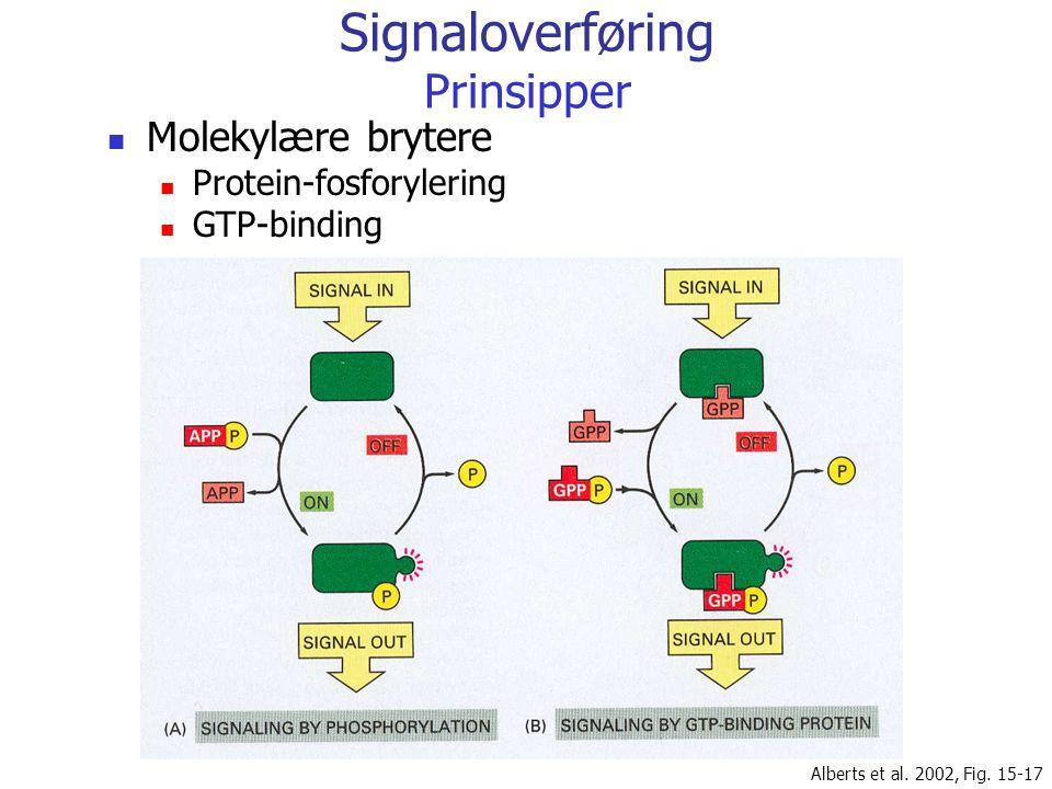 Signaloverføring Prinsipper Molekylære brytere Protein-fosforylering GTP-binding Alberts et al. 2002, Fig. 15-17