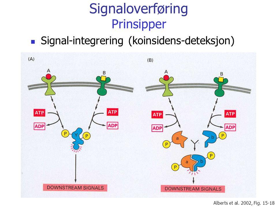 Signaloverføring Prinsipper Signal-integrering (koinsidens-deteksjon) Alberts et al. 2002, Fig. 15-18