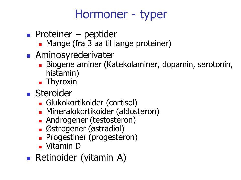 Hormoner - typer Proteiner – peptider Mange (fra 3 aa til lange proteiner) Aminosyrederivater Biogene aminer (Katekolaminer, dopamin, serotonin, hista