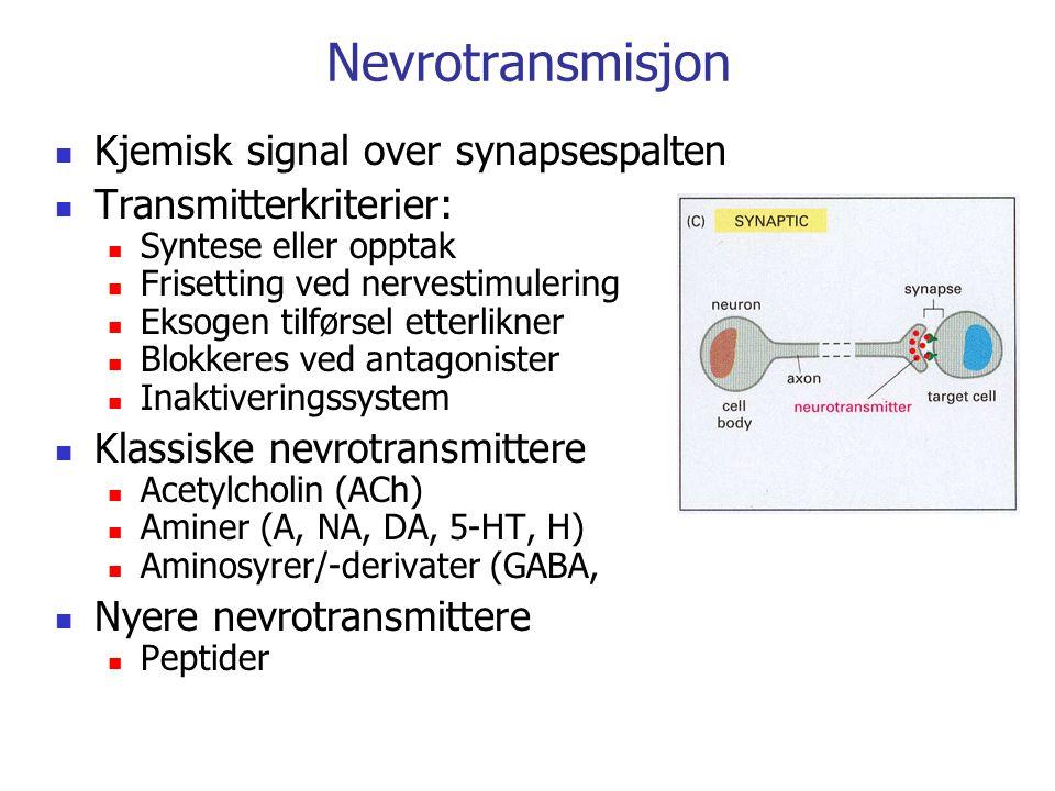 Reseptorer Bestemmer hvilke signaler en celle kan reagere på Spesifisitet Høy affinitet for ligand Reversibel binding (ikke alltid) Begrenset antall Binding av ligand setter i gang effekt To hovedgrupper: Intracellulære For lipofile ligander og gasser Reseptorer i cellemembranen (Membranreseptorer) Trenger signaloverføringssystem