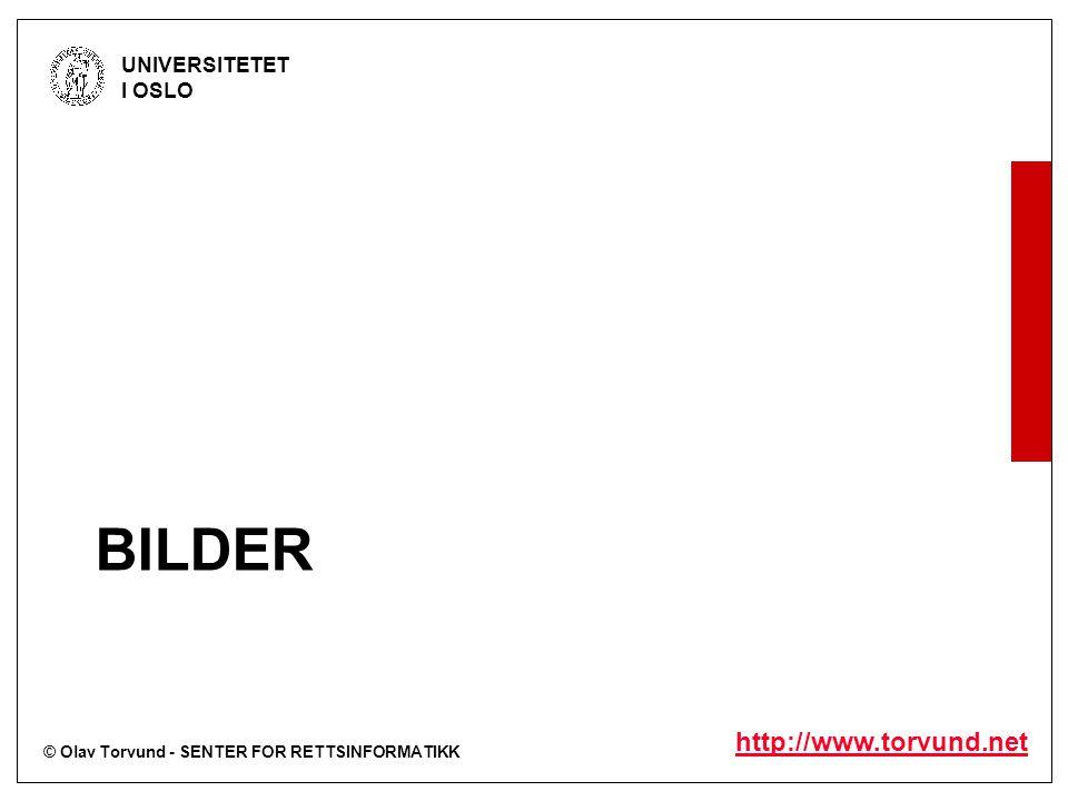 © Olav Torvund - SENTER FOR RETTSINFORMATIKK UNIVERSITETET I OSLO http://www.torvund.net BILDER