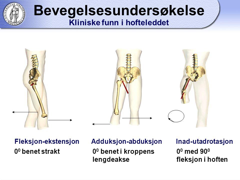 Fleksjon-ekstensjon Adduksjon-abduksjon Inad-utadrotasjon 0 0 benet strakt0 0 benet i kroppens lengdeakse 0 0 med 90 0 fleksjon i hoften Bevegelsesundersøkelse Kliniske funn i hofteleddet