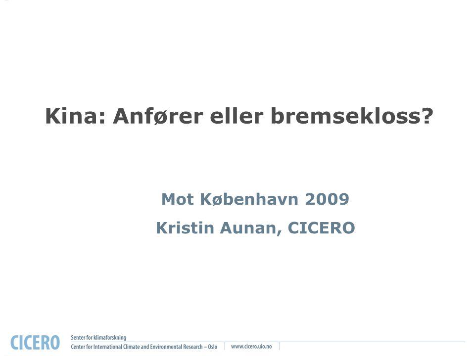 Kina: Anfører eller bremsekloss Mot København 2009 Kristin Aunan, CICERO