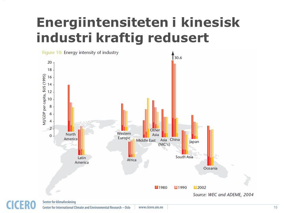 18 Energiintensiteten i kinesisk industri kraftig redusert The World Business Council for Sustainable Development, 2005