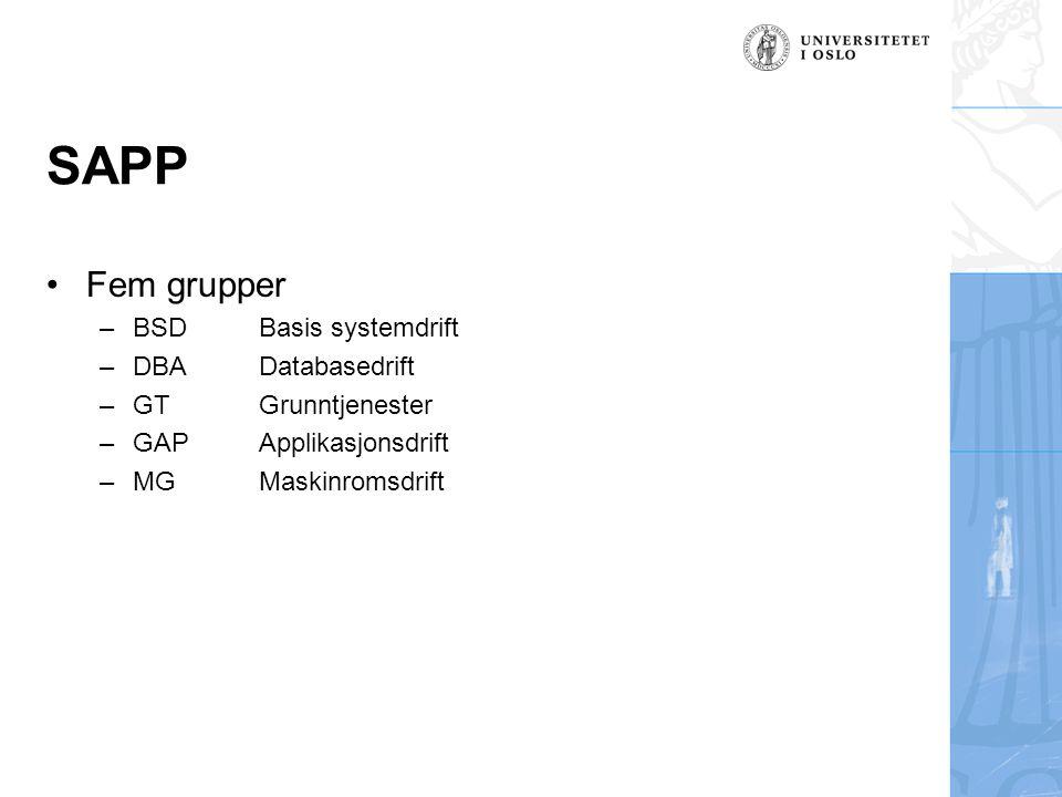 SAPP Fem grupper –BSDBasis systemdrift –DBADatabasedrift –GTGrunntjenester –GAPApplikasjonsdrift –MGMaskinromsdrift