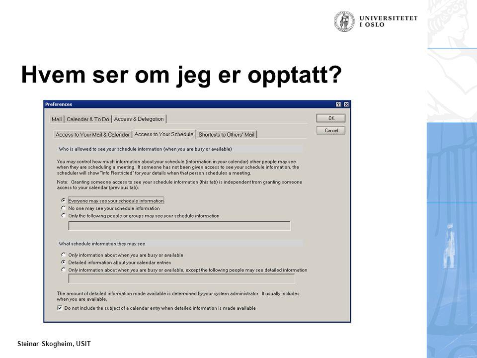 Steinar Skogheim, USIT Hvem ser om jeg er opptatt?