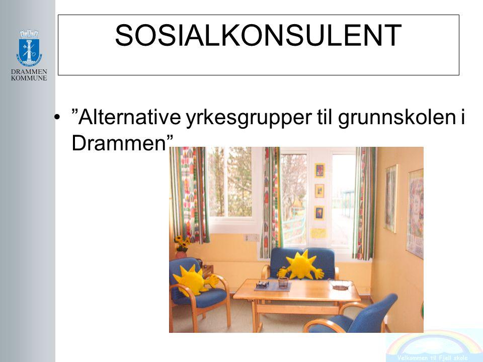 """SOSIALKONSULENT """"Alternative yrkesgrupper til grunnskolen i Drammen"""""""