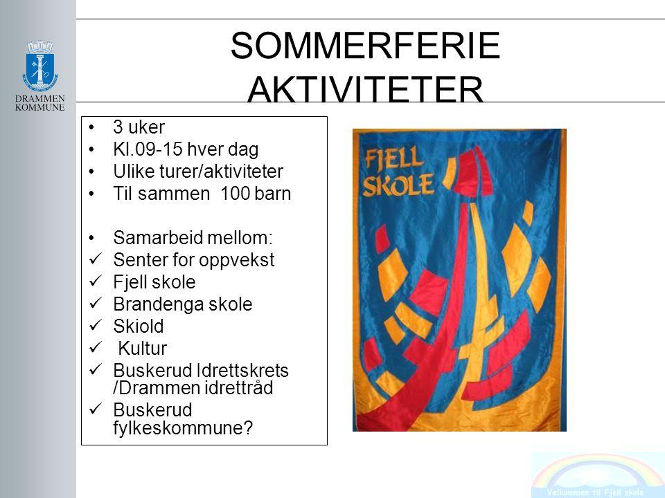 SOMMERFERIE AKTIVITETER 3 uker Kl.09-15 hver dag Ulike turer/aktiviteter Til sammen 100 barn Samarbeid mellom: Senter for oppvekst Fjell skole Branden