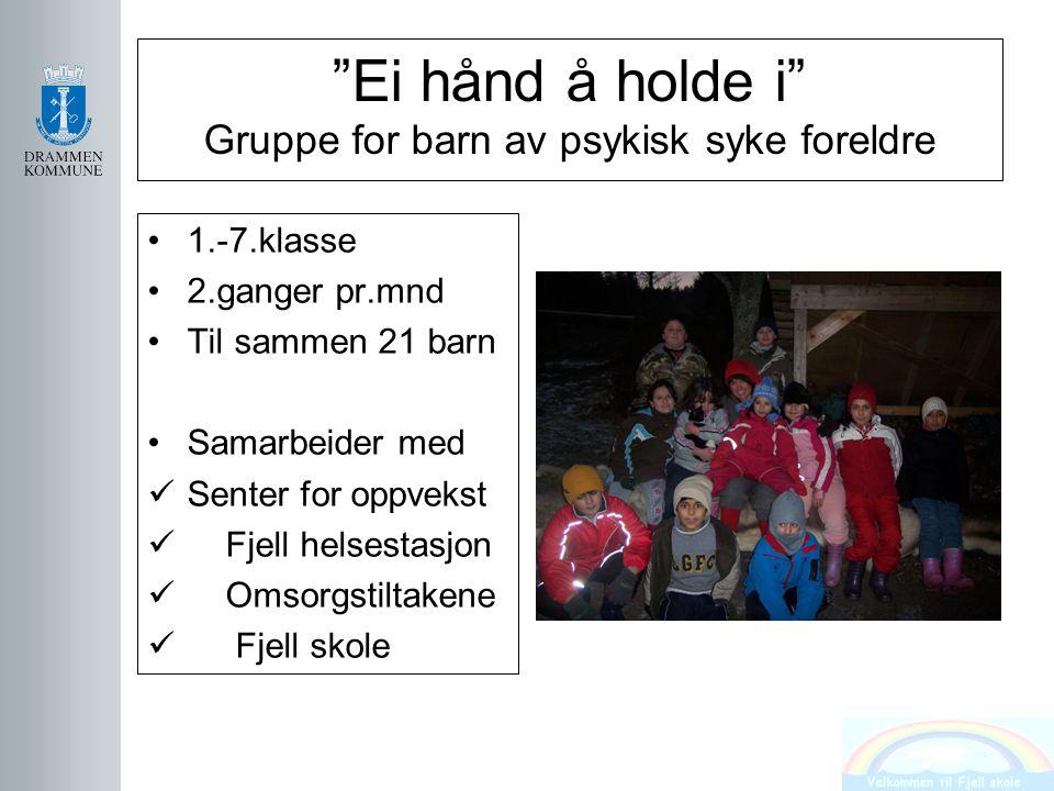 """""""Ei hånd å holde i"""" Gruppe for barn av psykisk syke foreldre 1.-7.klasse 2.ganger pr.mnd Til sammen 21 barn Samarbeider med Senter for oppvekst Fjell"""