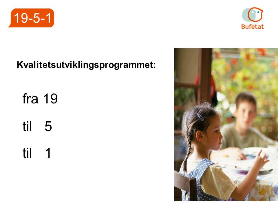 Kvalitetsutviklingsprogrammet: fra 19 til 5 til 1