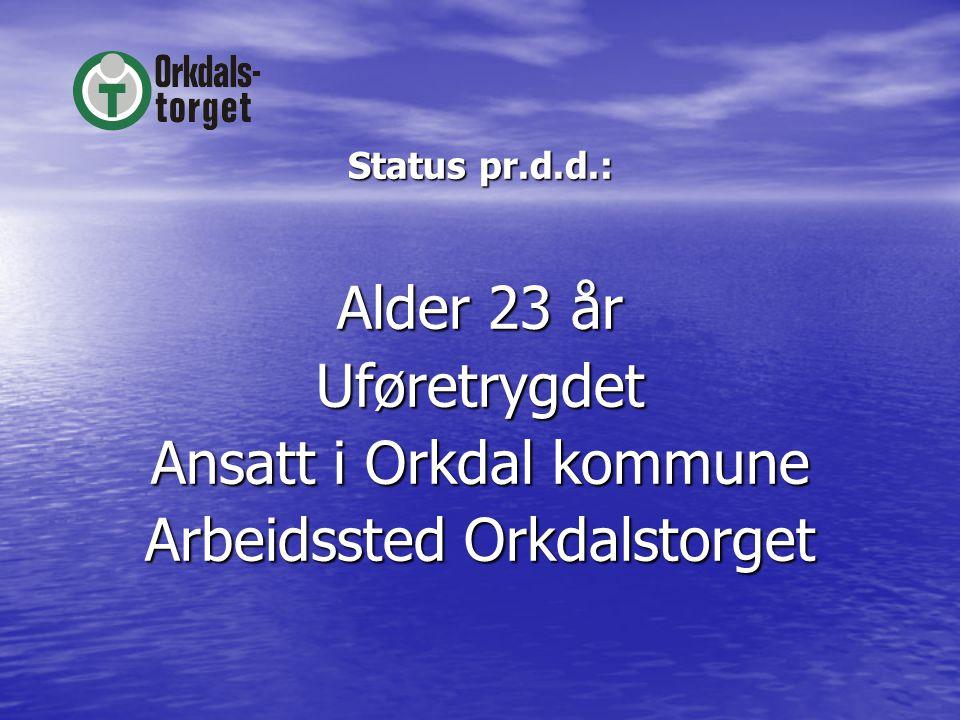 Status pr.d.d.: Alder 23 år Uføretrygdet Ansatt i Orkdal kommune Arbeidssted Orkdalstorget