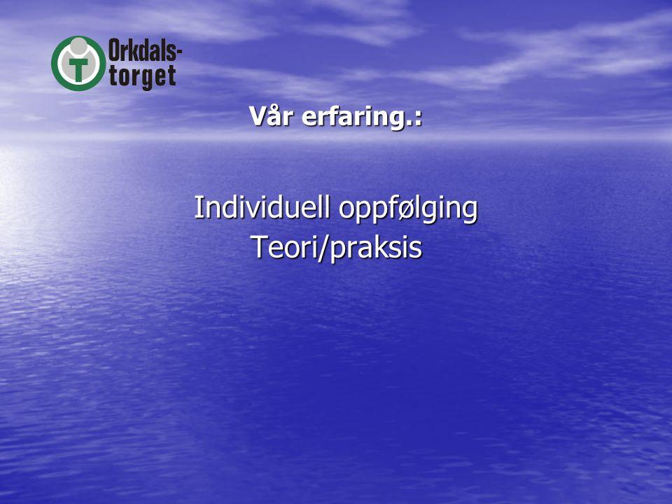 Vår erfaring.: Individuell oppfølging Teori/praksis