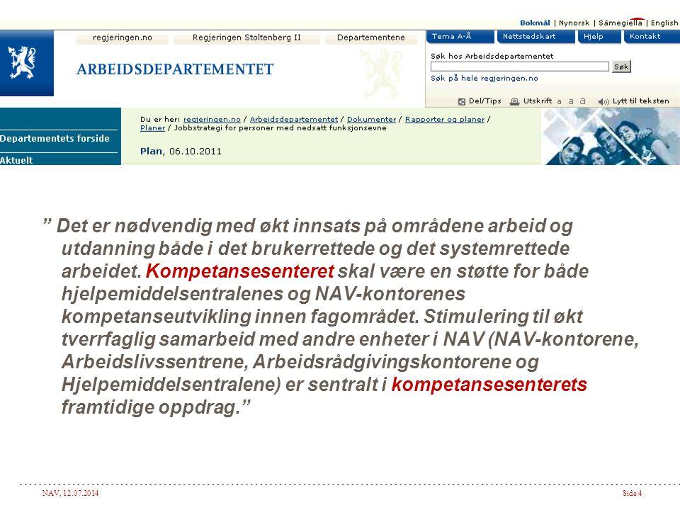 NAV, 12.07.2014Side 4 Det er nødvendig med økt innsats på områdene arbeid og utdanning både i det brukerrettede og det systemrettede arbeidet.