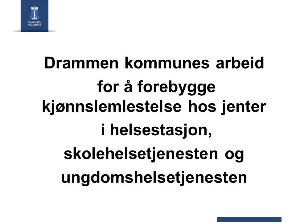 Drammen kommunes arbeid for å forebygge kjønnslemlestelse hos jenter i helsestasjon, skolehelsetjenesten og ungdomshelsetjenesten