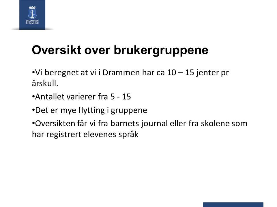 Oversikt over brukergruppene Vi beregnet at vi i Drammen har ca 10 – 15 jenter pr årskull. Antallet varierer fra 5 - 15 Det er mye flytting i gruppene