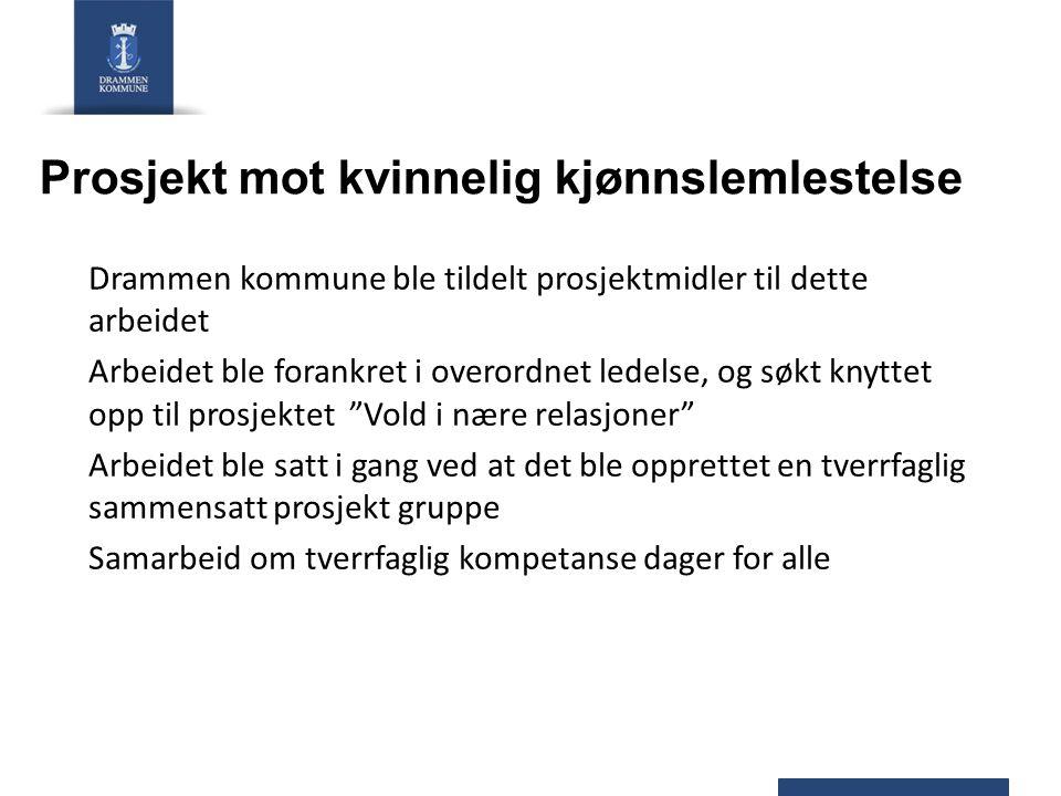 Prosjekt mot kvinnelig kjønnslemlestelse Drammen kommune ble tildelt prosjektmidler til dette arbeidet Arbeidet ble forankret i overordnet ledelse, og