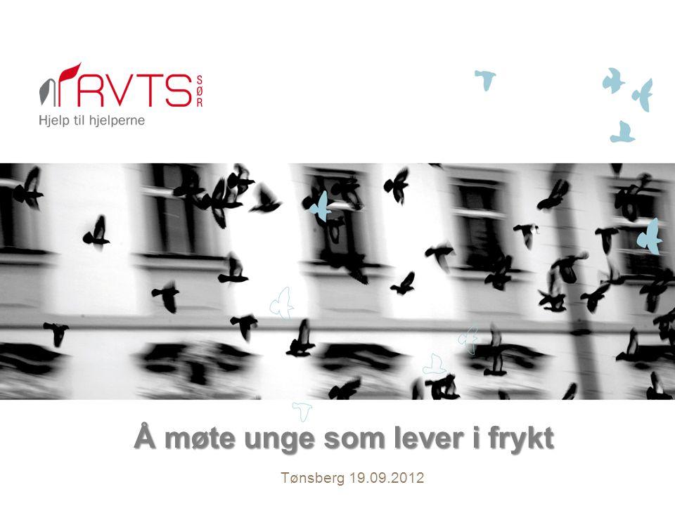 Å møte unge som lever i frykt Tønsberg 19.09.2012