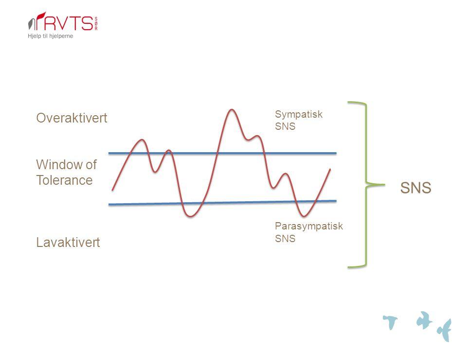 Overaktivert Window of Tolerance Lavaktivert SNS Sympatisk SNS Parasympatisk SNS