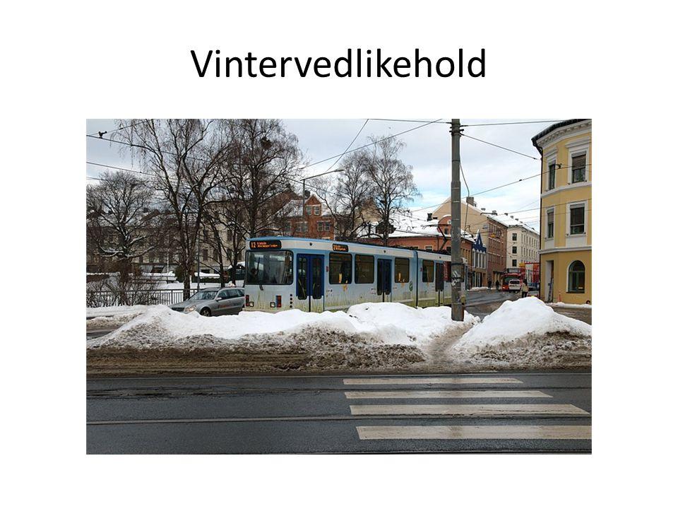 Vintervedlikehold