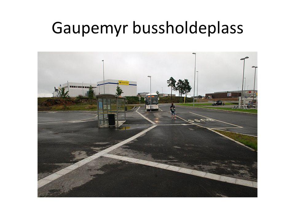 Gaupemyr bussholdeplass