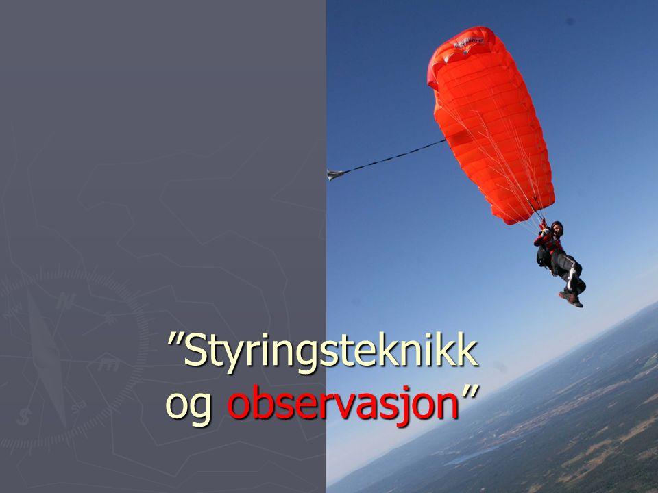 Styringsteknikk og observasjon