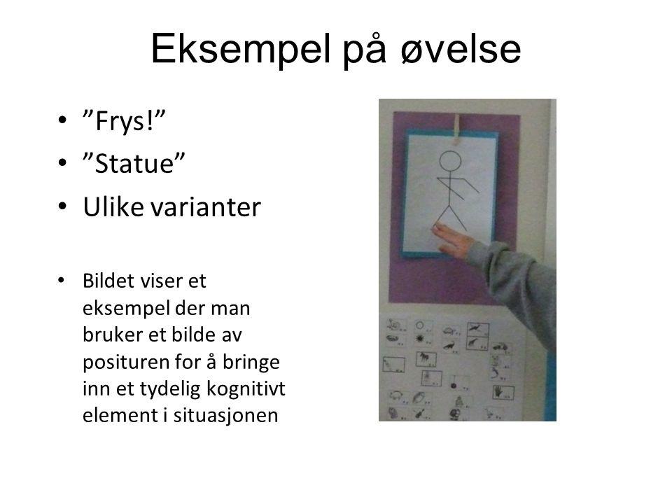 Frys! Statue Ulike varianter Bildet viser et eksempel der man bruker et bilde av posituren for å bringe inn et tydelig kognitivt element i situasjonen Eksempel på øvelse