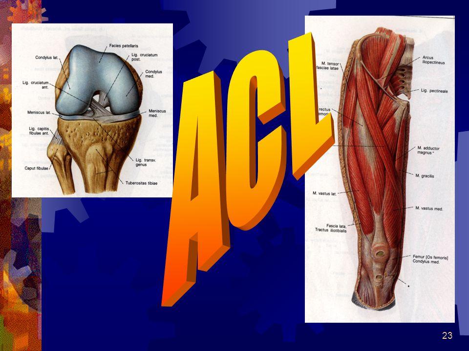 22 Ligament skader: RRICE OOperasjon? IIsolert eller sammensatt skade NNeuromuskulær kontroll GGangtrening