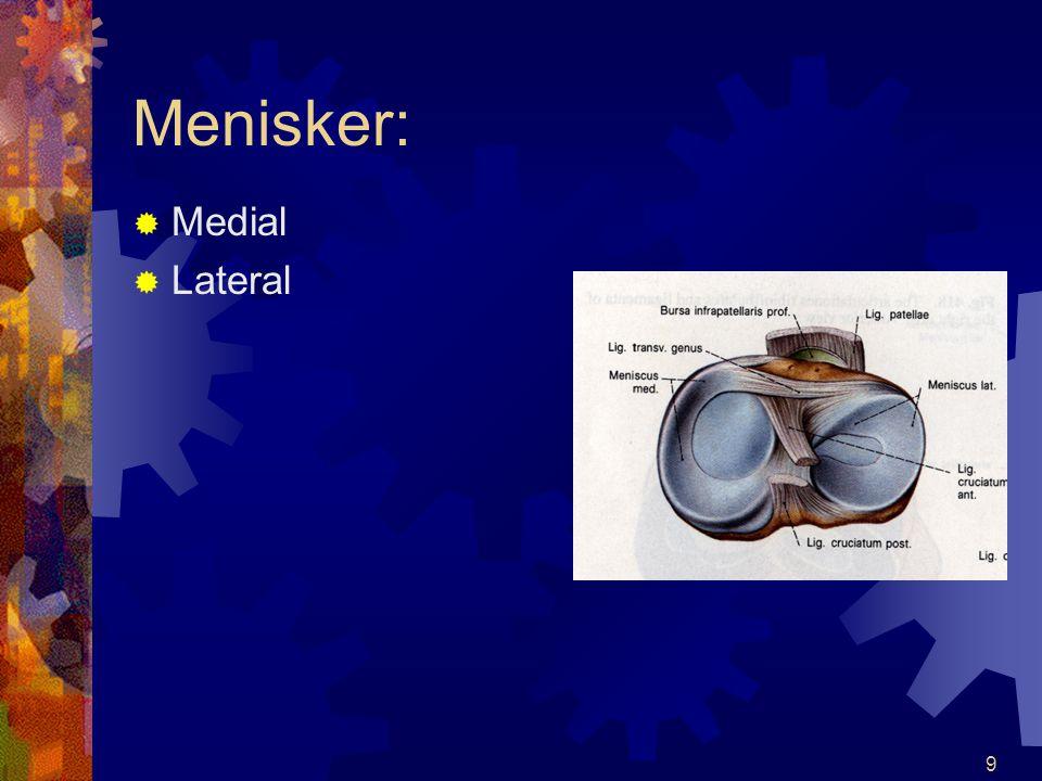 9 Menisker:  Medial  Lateral