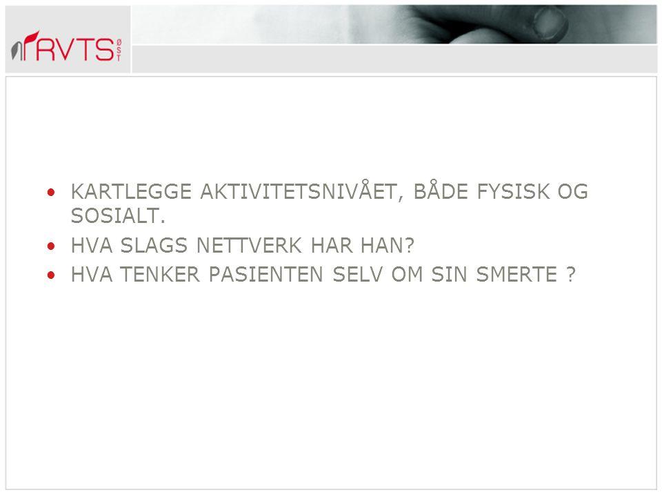 SMERTEN SOM FENOMEN FØLELSEN AV Å HA DET VONDT.