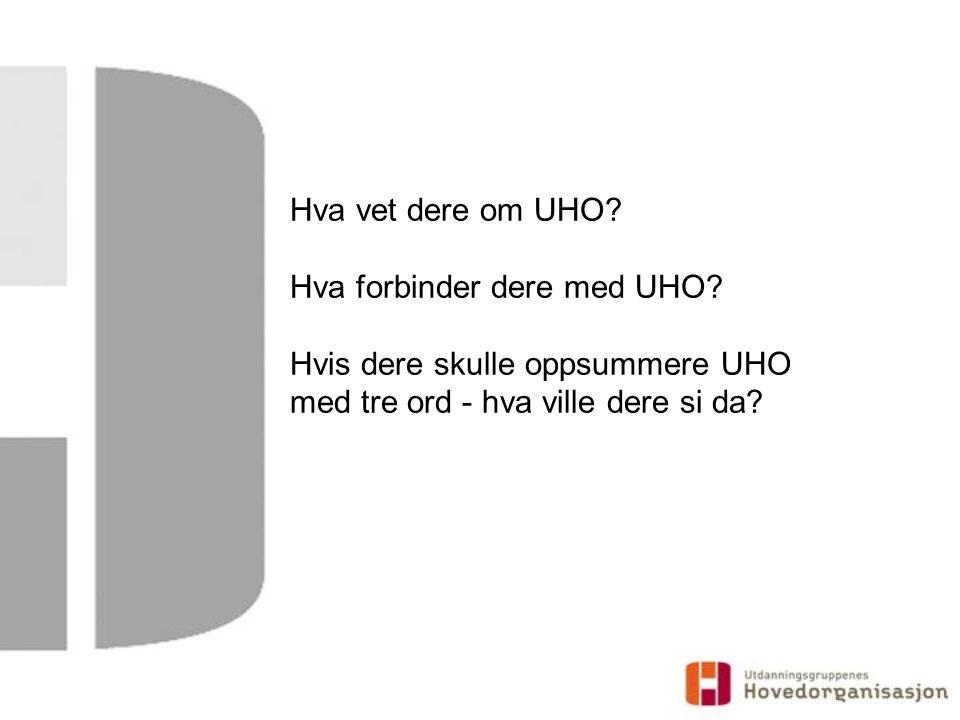 Hva vet dere om UHO. Hva forbinder dere med UHO.