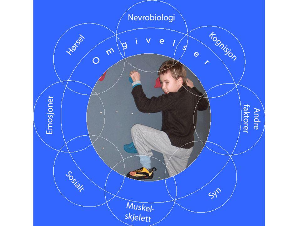 Hørsel og bevegelse Hvis målet er deltakelse og aktivitet og barnet er hørselshemmet - Hva bør fysioterapeuten vite.