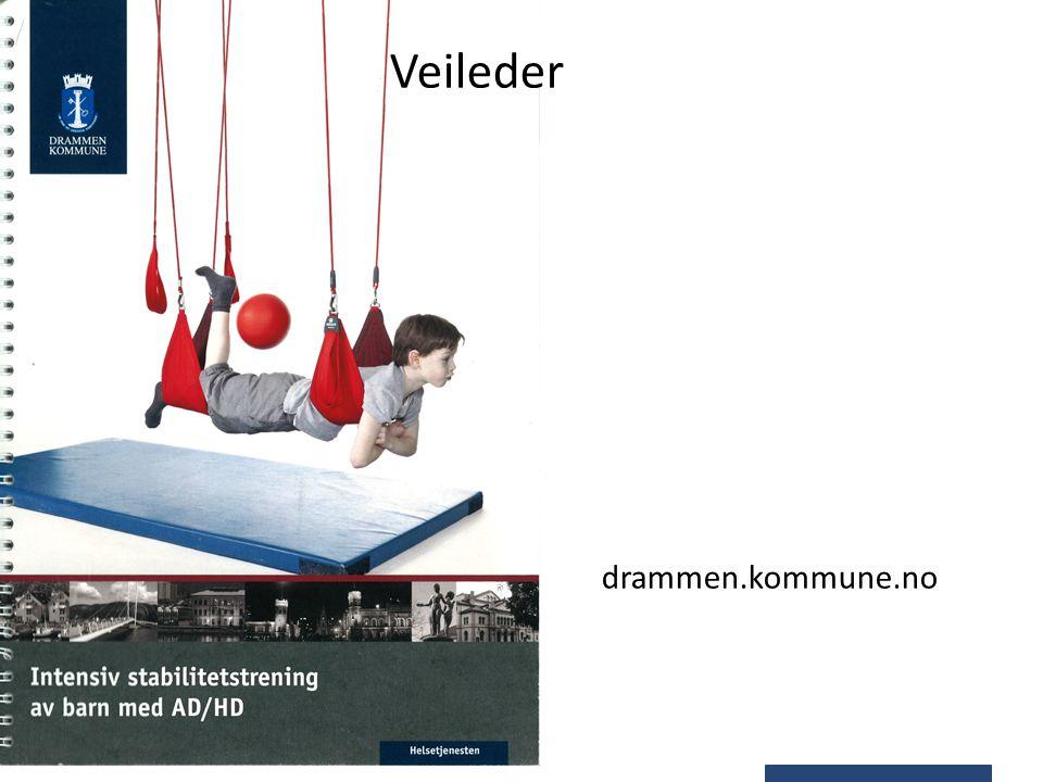 Veileder drammen.kommune.no