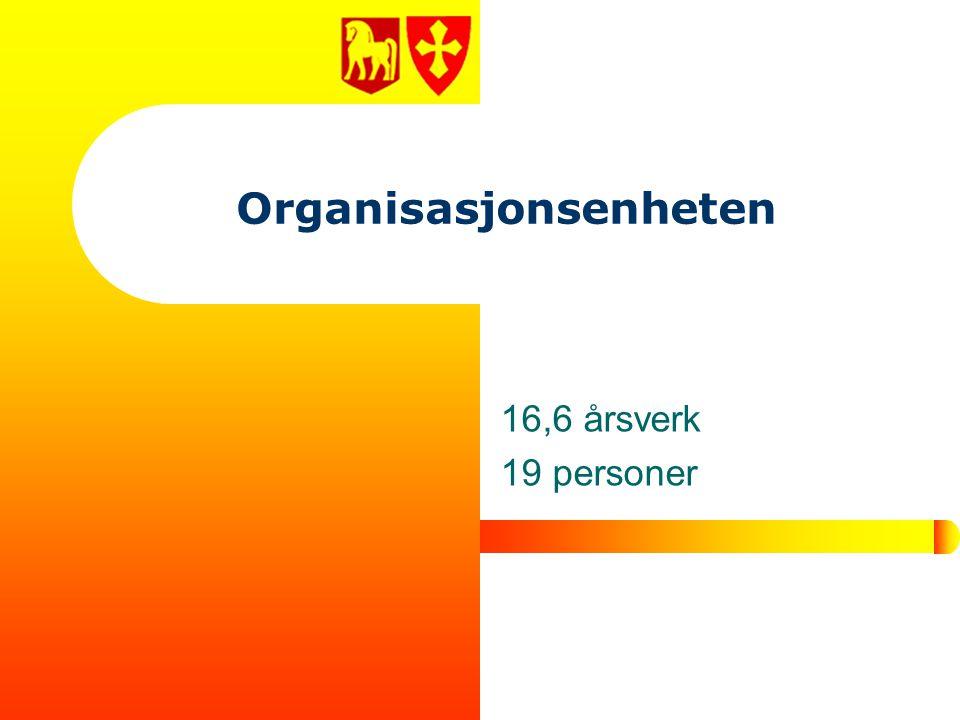 Organisasjonsenheten 16,6 årsverk 19 personer