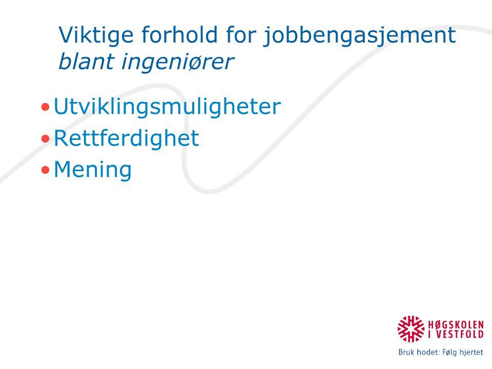 Viktige forhold for jobbengasjement blant ingeniører Utviklingsmuligheter Rettferdighet Mening