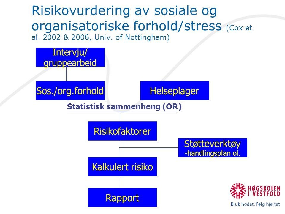 Intervju/ gruppearbeid Rapport Støtteverktøy -handlingsplan ol.