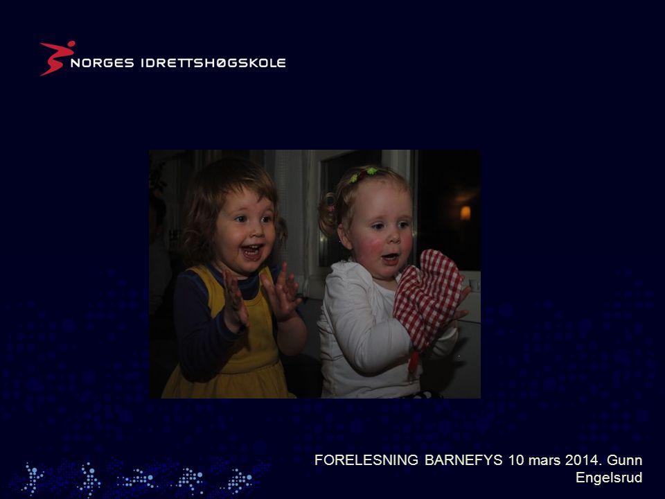 FORELESNING BARNEFYS 10 mars 2014. Gunn Engelsrud
