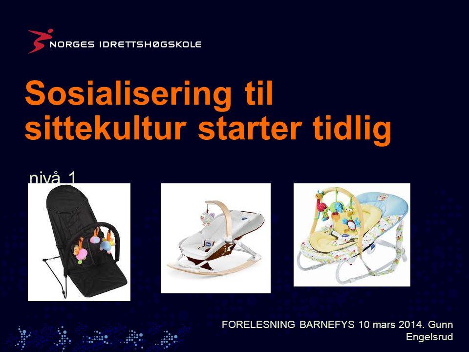 Sosialisering til sittekultur starter tidlig nivå 1 nivå 2 nivå 3 nivå 1 nivå 2 nivå 3 FORELESNING BARNEFYS 10 mars 2014.