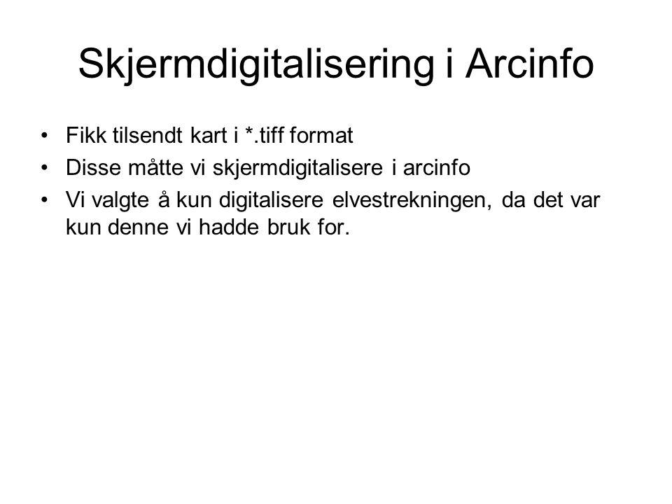 Skjermdigitalisering i Arcinfo Fikk tilsendt kart i *.tiff format Disse måtte vi skjermdigitalisere i arcinfo Vi valgte å kun digitalisere elvestrekni