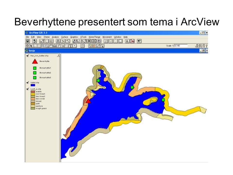 Beverhyttene presentert som tema i ArcView