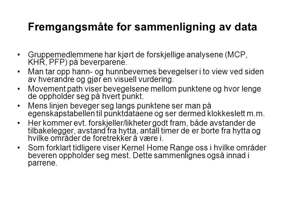 Gruppemedlemmene har kjørt de forskjellige analysene (MCP, KHR, PFP) på beverparene. Man tar opp hann- og hunnbevernes bevegelser i to view ved siden