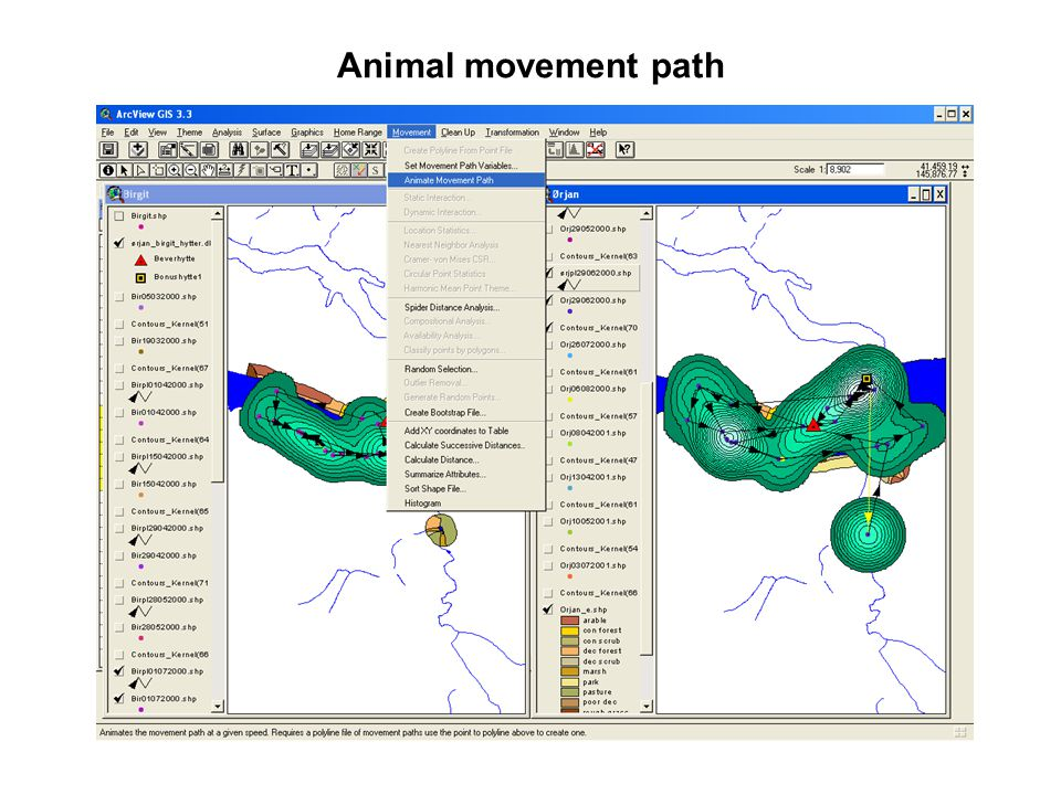 Animal movement path