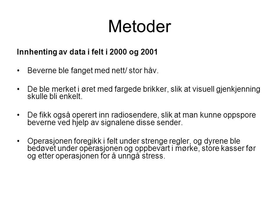 Metoder Innhenting av data i felt i 2000 og 2001 Beverne ble fanget med nett/ stor håv. De ble merket i øret med fargede brikker, slik at visuell gjen