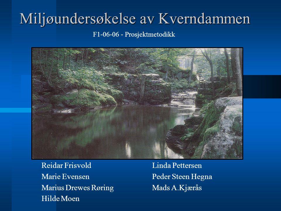 Miljøundersøkelse av Kverndammen Reidar Frisvold F1-06-06 - Prosjektmetodikk Marie Evensen Marius Drewes Røring Hilde Moen Linda Pettersen Peder Steen Hegna Mads A.Kjærås