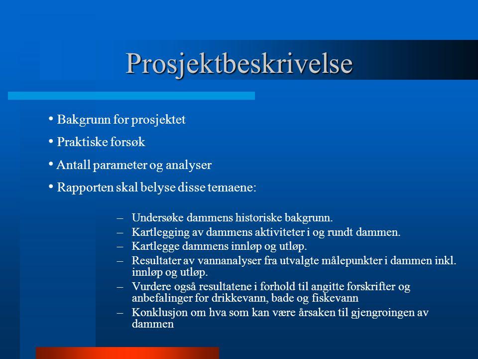 Prosjektbeskrivelse –Undersøke dammens historiske bakgrunn. –Kartlegging av dammens aktiviteter i og rundt dammen. –Kartlegge dammens innløp og utløp.