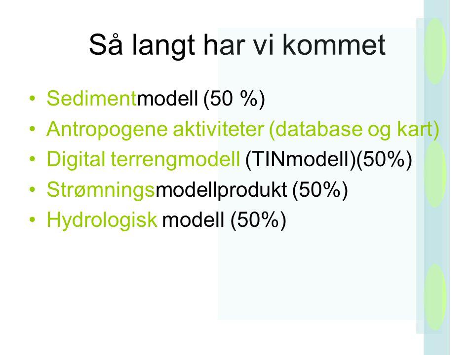 Så langt har vi kommet Sedimentmodell (50 %) Antropogene aktiviteter (database og kart) Digital terrengmodell (TINmodell)(50%) Strømningsmodellprodukt (50%) Hydrologisk modell (50%)