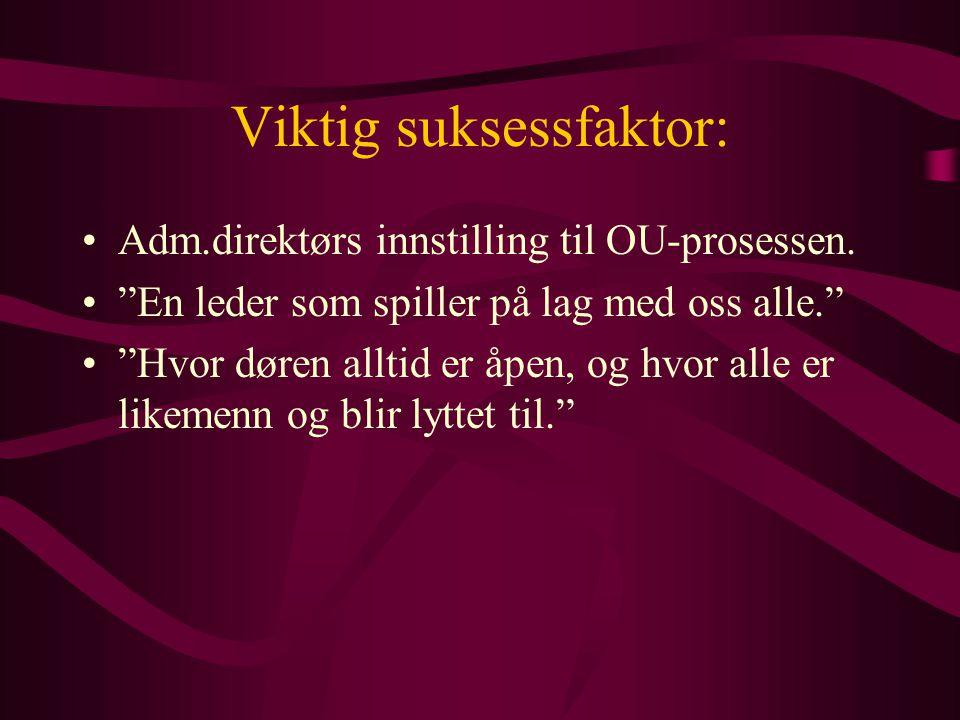 Viktig suksessfaktor: Adm.direktørs innstilling til OU-prosessen.